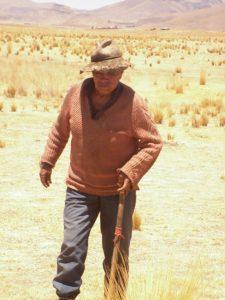 Alter Mann auf dem Land in Puno